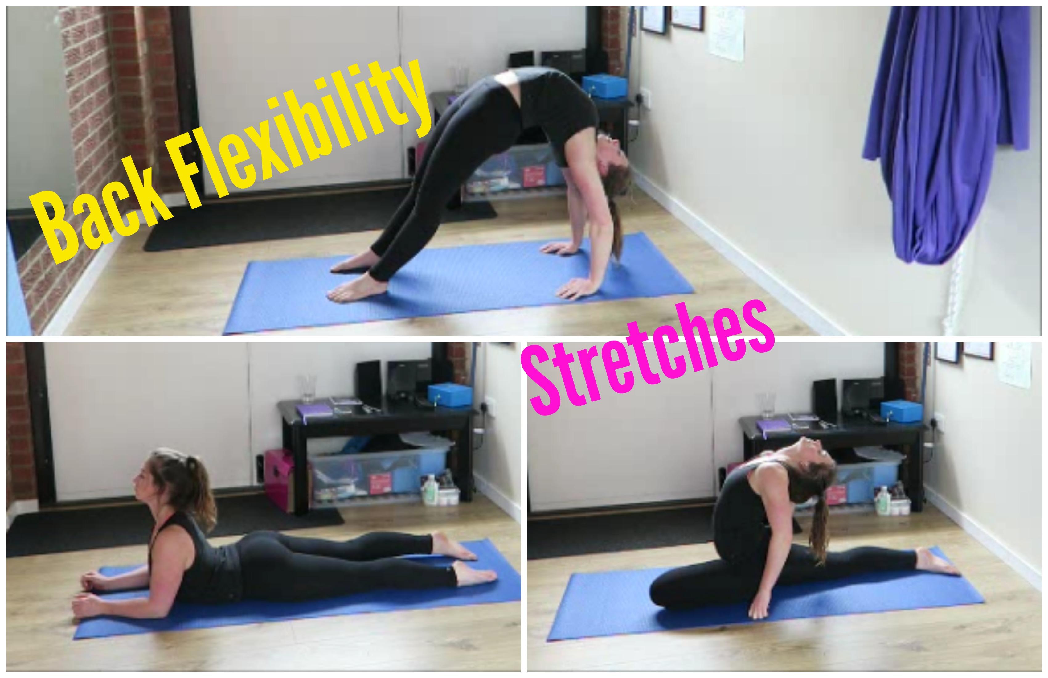 Back Flexibility Stretches
